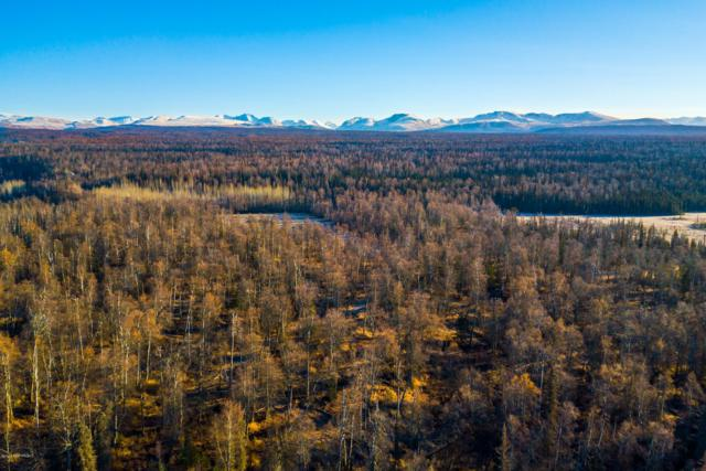 34651 S Montana Creek Road, Talkeetna, AK 99676 (MLS #18-16262) :: RMG Real Estate Network | Keller Williams Realty Alaska Group