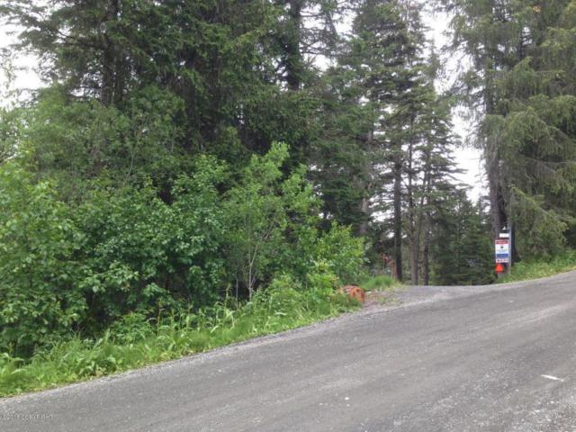 L15 Echo Ridge Drive, Girdwood, AK 99587 (MLS #18-1628) :: Real Estate Brokers of Alaska