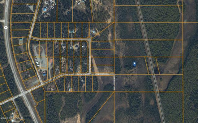 16269 E Mckinley Avenue, Willow, AK 99688 (MLS #18-16950) :: RMG Real Estate Network | Keller Williams Realty Alaska Group
