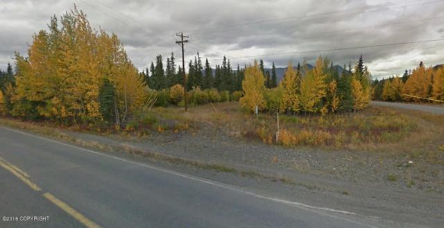 L38 Parks Highway, Cantwell, AK 99729 (MLS #18-17413) :: RMG Real Estate Network | Keller Williams Realty Alaska Group