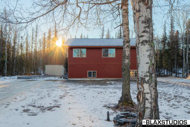 1500 W Crazy Pearsons Road, Wasilla, AK 99654 (MLS #18-18822) :: Channer Realty Group
