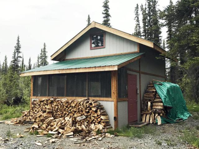 L2 B1 Sven Alaska Subdivision Road, Glennallen, AK 99588 (MLS #18-19368) :: Channer Realty Group