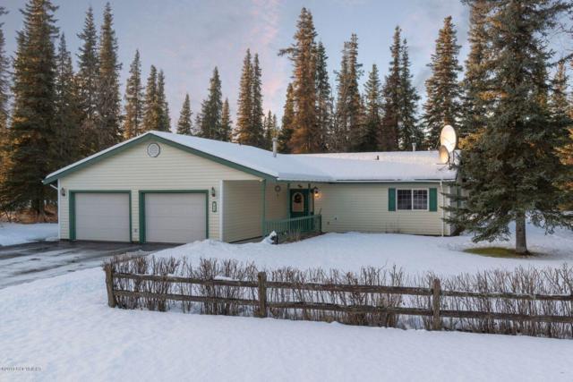 165 Amaryllis Street, Soldotna, AK 99669 (MLS #18-19949) :: Alaska Realty Experts