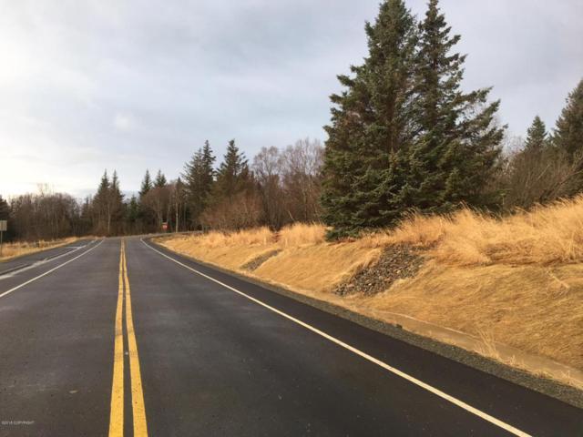 1130 Eric Lane, Homer, AK 99603 (MLS #18-2387) :: Northern Edge Real Estate, LLC