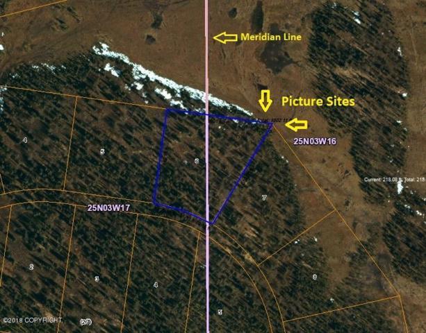 L6 B26 No Road, Talkeetna, AK 99676 (MLS #18-2627) :: Northern Edge Real Estate, LLC