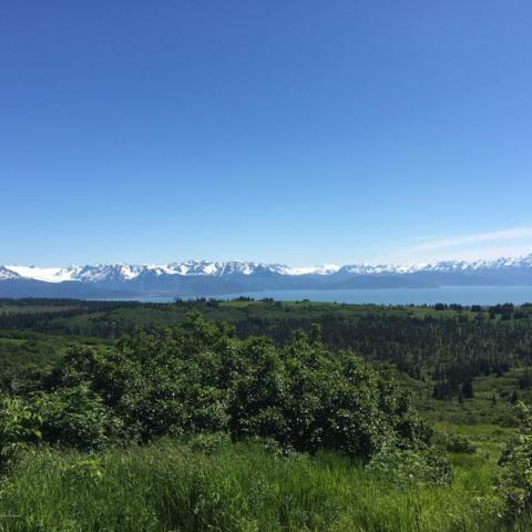 35783 Patton Street, Homer, AK 99603 (MLS #18-2643) :: RMG Real Estate Network | Keller Williams Realty Alaska Group