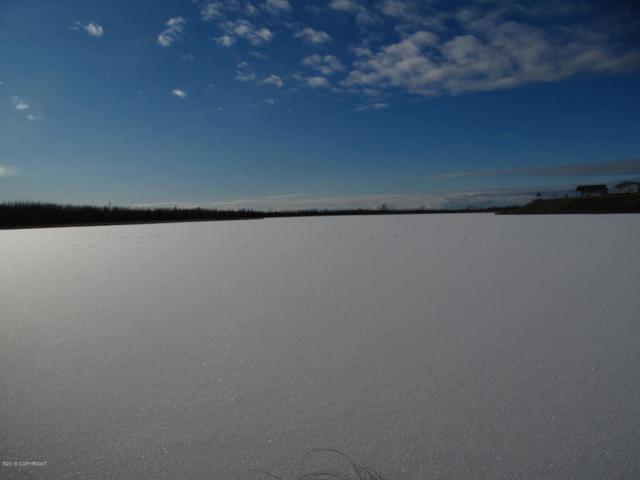 3872 S Pond Lily Lane, Big Lake, AK 99652 (MLS #18-3869) :: Synergy Home Team