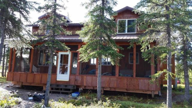 0 Dixon's Cache Lot 7A, Glennallen, AK 99588 (MLS #18-3899) :: Synergy Home Team