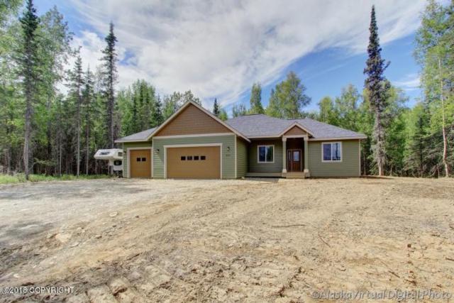 3208 E Dreamland Circle, Wasilla, AK 99654 (MLS #18-3921) :: Channer Realty Group