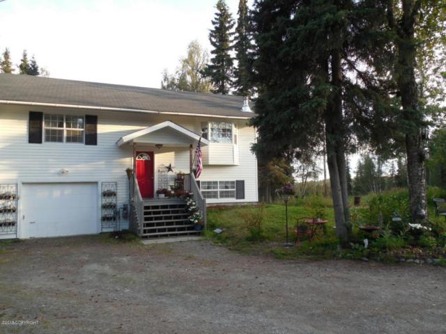 37030 Denise Lake Drive, Soldotna, AK 99669 (MLS #18-5615) :: Team Dimmick