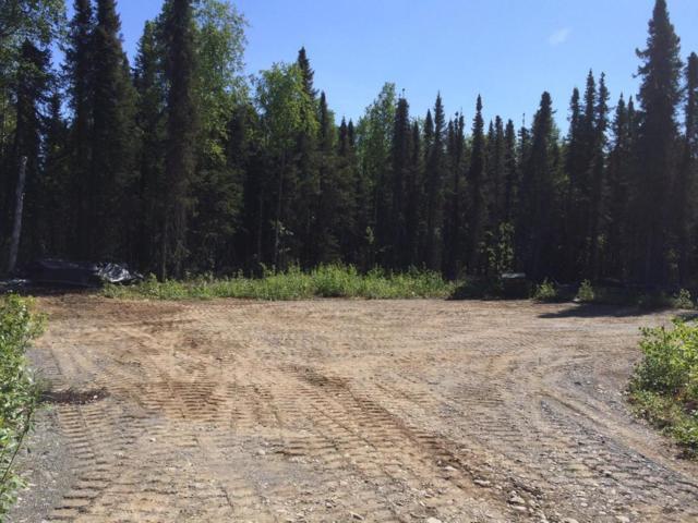 47093 S Merlin Drive, Willow, AK 99688 (MLS #18-6021) :: Northern Edge Real Estate, LLC