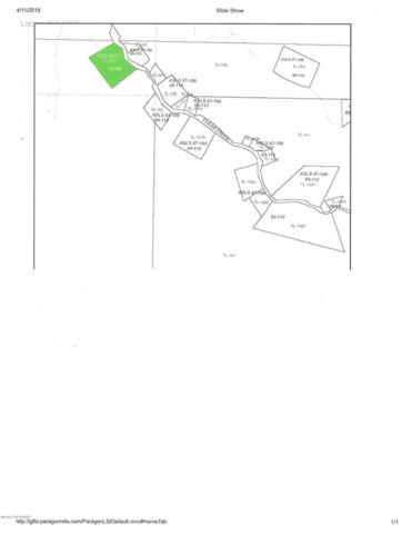 Tr K Clear Creek, Salcha, AK 99714 (MLS #18-6820) :: The Huntley Owen Team