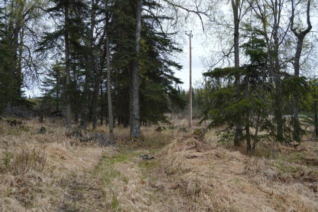 63220 Sterling Highway, Clam Gulch, AK 99568 (MLS #18-8084) :: Core Real Estate Group