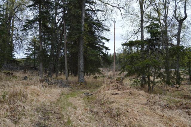 63220 Sterling Highway, Clam Gulch, AK 99568 (MLS #18-8084) :: RMG Real Estate Network | Keller Williams Realty Alaska Group