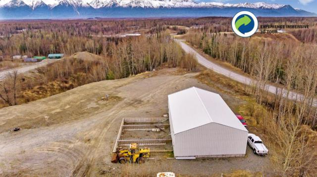 1541 France Road, Palmer, AK 99645 (MLS #18-8143) :: Channer Realty Group