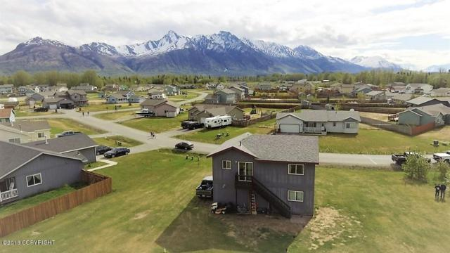 13730 E Jersey Loop, Palmer, AK 99645 (MLS #18-8680) :: Channer Realty Group