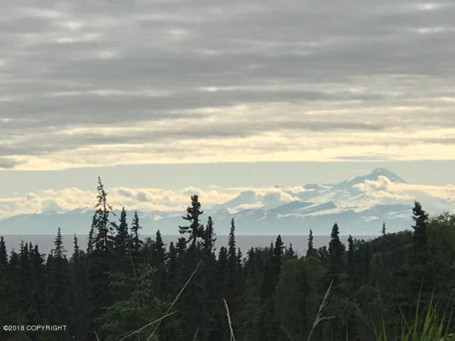 L16 Nell Kelly Homestead, Clam Gulch, AK 99568 (MLS #18-9818) :: RMG Real Estate Network | Keller Williams Realty Alaska Group