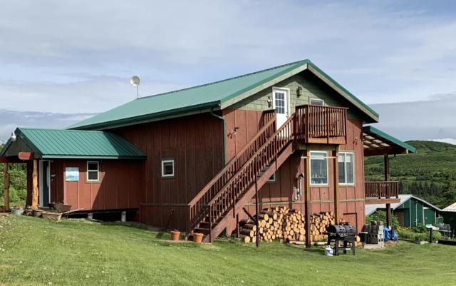 35580 N Fork Road, Anchor Point, AK 99556 (MLS #19-10290) :: RMG Real Estate Network | Keller Williams Realty Alaska Group