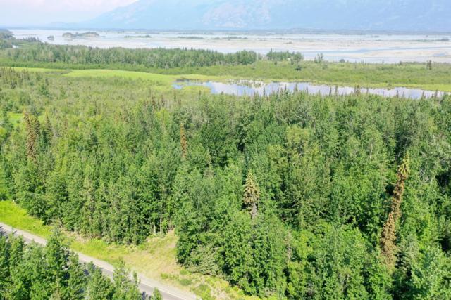 25623 E Knik River Road, Palmer, AK 99645 (MLS #19-10397) :: Roy Briley Real Estate Group