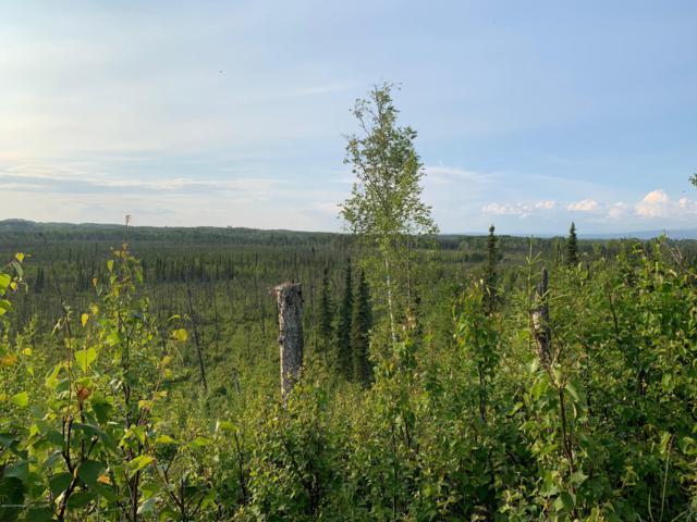 14353 Shady Lane, Big Lake, AK 99654 (MLS #19-10422) :: RMG Real Estate Network | Keller Williams Realty Alaska Group