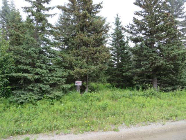 72775 Grumman Avenue, Anchor Point, AK 99556 (MLS #19-11234) :: RMG Real Estate Network | Keller Williams Realty Alaska Group