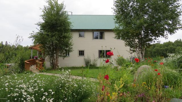 18245 S Birch Creek Boulevard, Talkeetna, AK 99676 (MLS #19-12937) :: RMG Real Estate Network | Keller Williams Realty Alaska Group