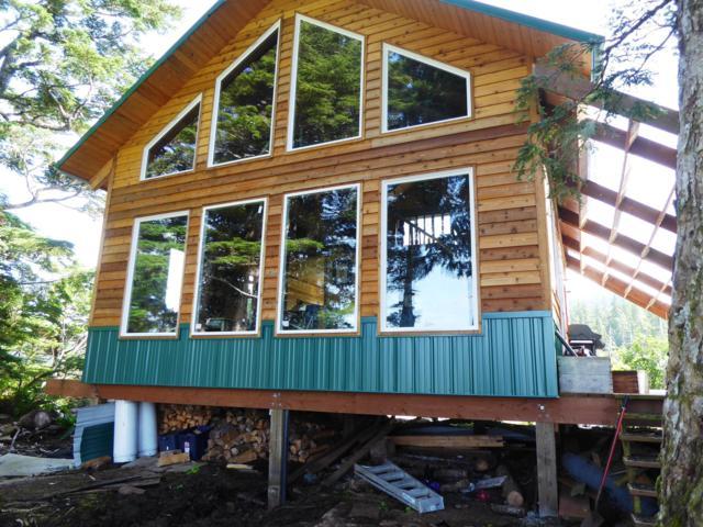 Mi 6 Whitshed Road, Cordova, AK 99574 (MLS #19-13313) :: RMG Real Estate Network | Keller Williams Realty Alaska Group