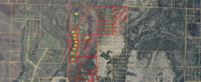 10 Lots Sweet Jewell (No Road), Anchor Point, AK 99556 (MLS #19-13472) :: Wolf Real Estate Professionals