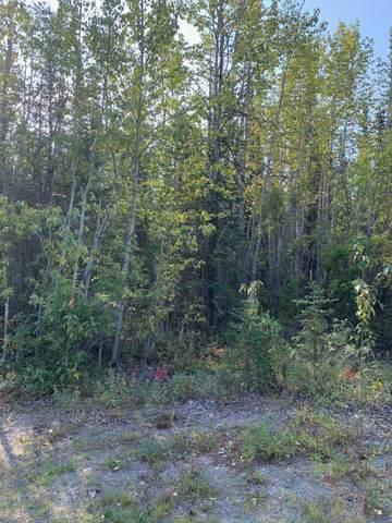L5 Wildwood Street, Copper Center, AK 99573 (MLS #19-14698) :: RMG Real Estate Network | Keller Williams Realty Alaska Group