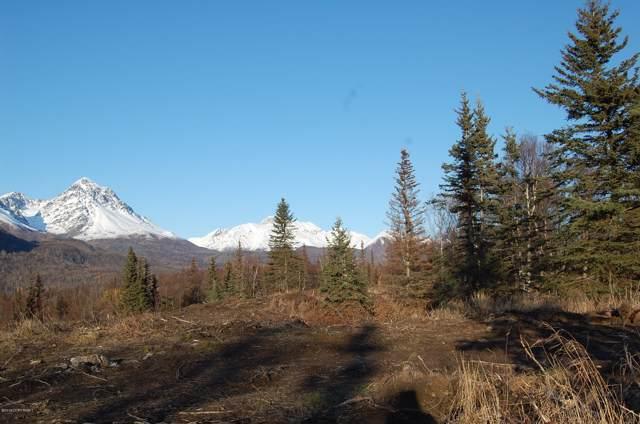 C005 N No Road Highway, Palmer, AK 99645 (MLS #19-14903) :: RMG Real Estate Network | Keller Williams Realty Alaska Group