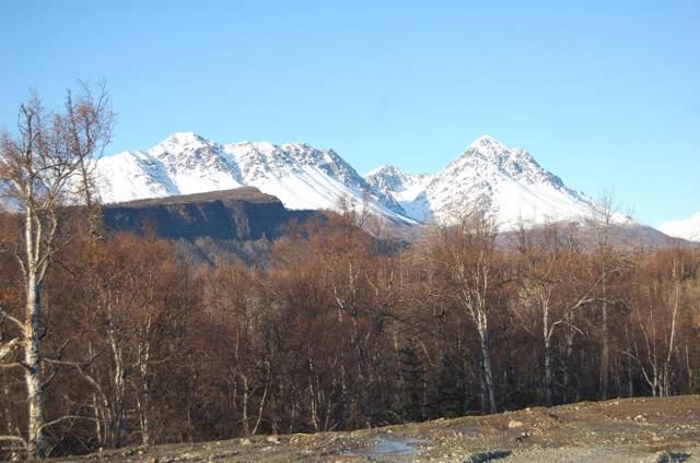 C006 N No Road Highway, Palmer, AK 99645 (MLS #19-14904) :: RMG Real Estate Network | Keller Williams Realty Alaska Group