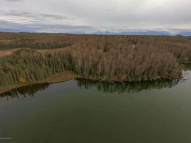 22662 W Jeanmarc Circle, Big Lake, AK 99652 (MLS #19-15109) :: Core Real Estate Group