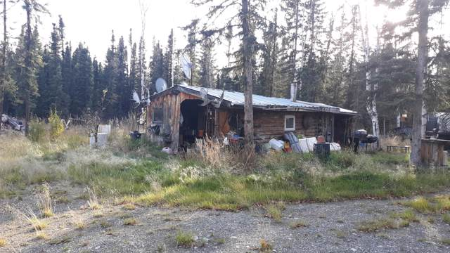 L3 Bartlett, Delta Junction, AK 99737 (MLS #19-17005) :: Wolf Real Estate Professionals