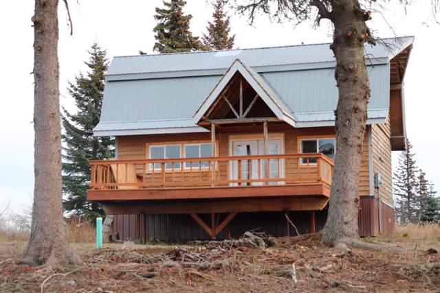 28205 Coastal Vista Circle, Anchor Point, AK 99556 (MLS #19-17027) :: Core Real Estate Group