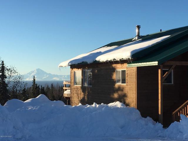 57480 Jellyfish Avenue, Clam Gulch, AK 99568 (MLS #19-1862) :: RMG Real Estate Network | Keller Williams Realty Alaska Group
