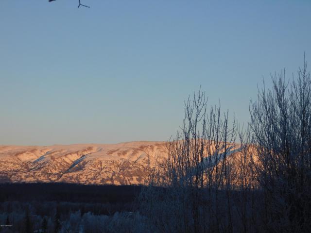 2677 E Beech Way, Wasilla, AK 99654 (MLS #19-1880) :: The Adrian Jaime Group | Keller Williams Realty Alaska