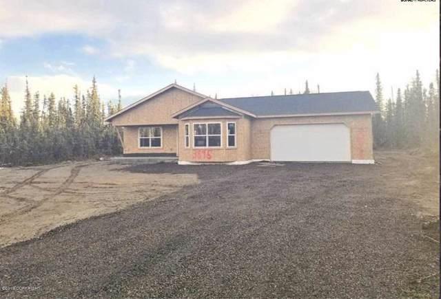 1720 Dallas Drive, North Pole, AK 99705 (MLS #19-19044) :: Core Real Estate Group