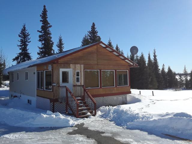 34525 N Fork Road, Anchor Point, AK 99556 (MLS #19-2886) :: Core Real Estate Group