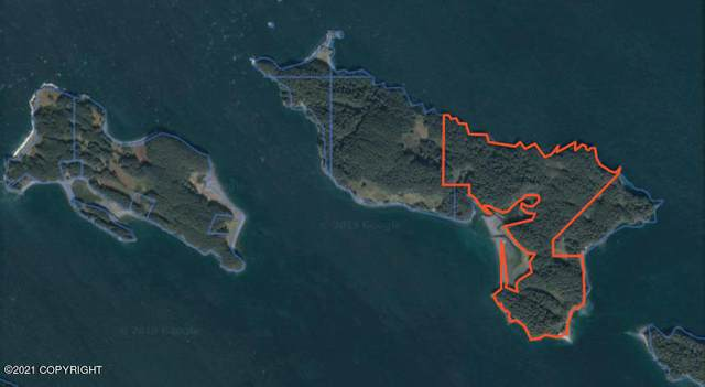 L3-5 Dry Spruce Island, Port Lions, AK 99550 (MLS #19-3018) :: RMG Real Estate Network | Keller Williams Realty Alaska Group