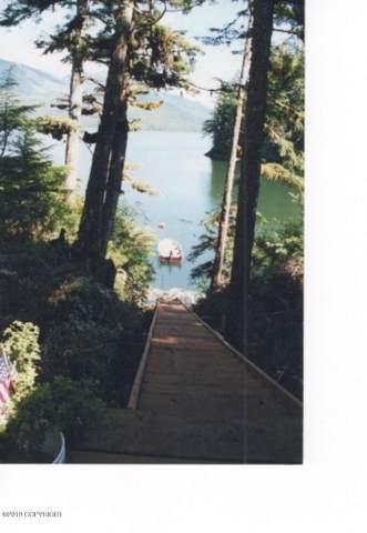 L3 B3, Wrangell, AK 99929 (MLS #19-3266) :: Wolf Real Estate Professionals