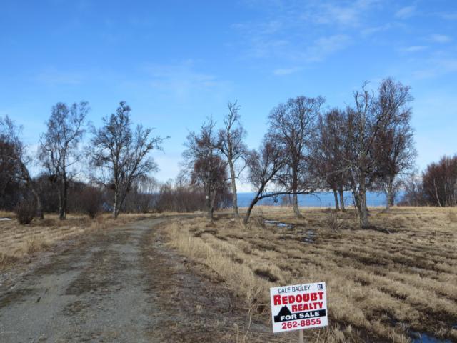 11151 Crestline Lane, Clam Gulch, AK 99568 (MLS #19-3335) :: RMG Real Estate Network | Keller Williams Realty Alaska Group
