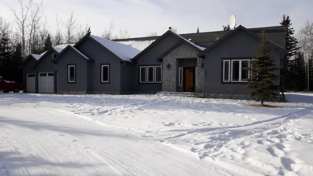 4345 Olmstead Road, Delta Junction, AK 99737 (MLS #19-3355) :: The Adrian Jaime Group   Keller Williams Realty Alaska