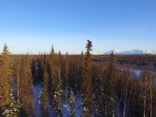 A004 Joe's Road, Wasilla, AK 99623 (MLS #19-4016) :: RMG Real Estate Network | Keller Williams Realty Alaska Group