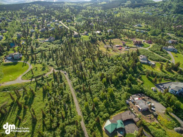 000 Hideaway Trail, Anchorage, AK 99507 (MLS #19-4211) :: Roy Briley Real Estate Group