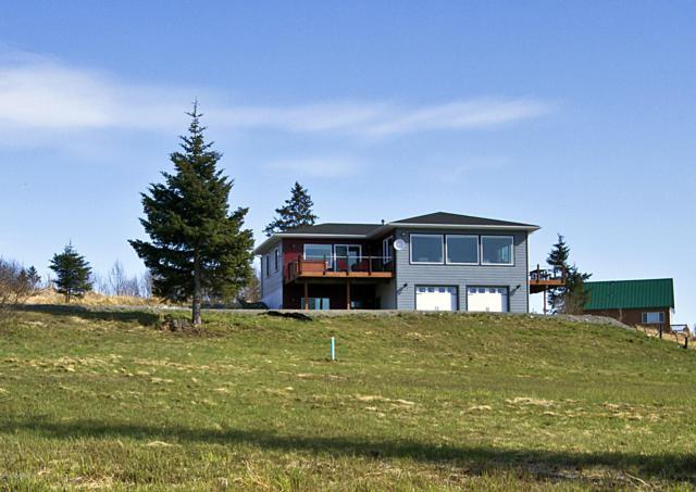 67206 Endless View Loop, Homer, AK 99603 (MLS #19-4721) :: Roy Briley Real Estate Group