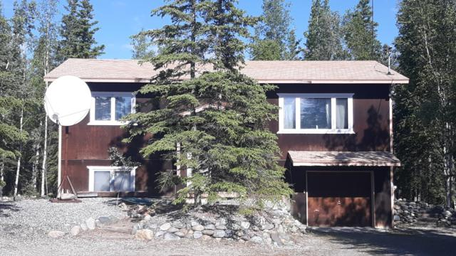 5640 Spruce Lane, Delta Junction, AK 99737 (MLS #19-4830) :: Wolf Real Estate Professionals