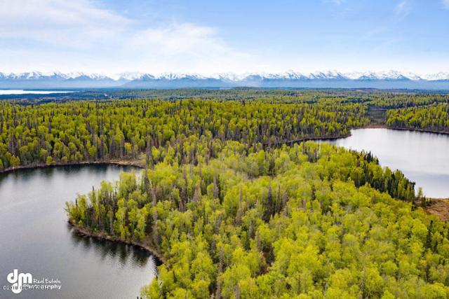 23165 S Twin Island Drive, Wasilla, AK 99654 (MLS #19-4952) :: Roy Briley Real Estate Group