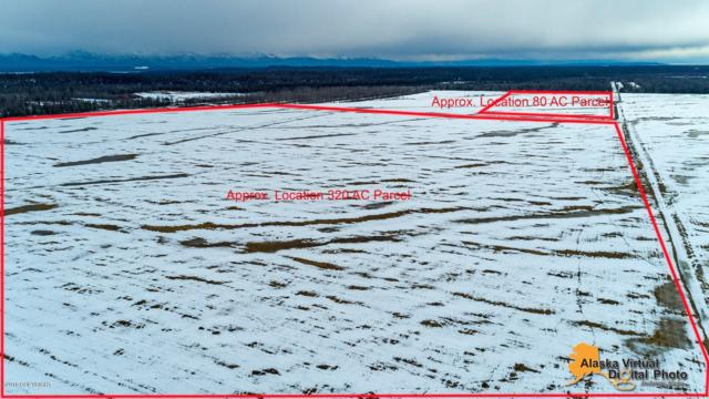 28345 W Point Mackenzie Road, Wasilla, AK 99654 (MLS #19-5241) :: Roy Briley Real Estate Group