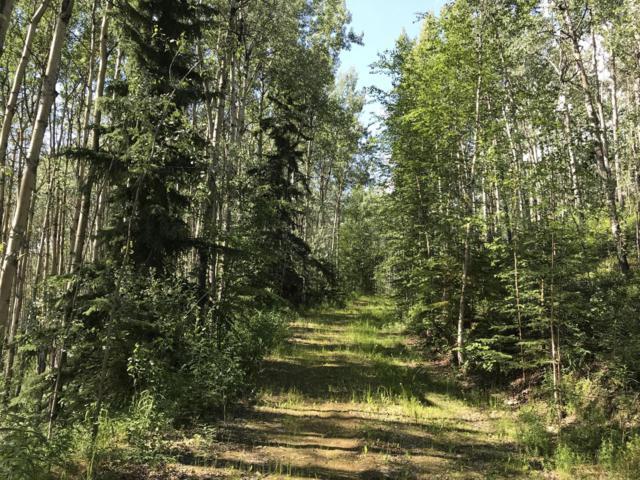 3854 Frenchman Road, Fairbanks, AK 99709 (MLS #19-6690) :: Core Real Estate Group