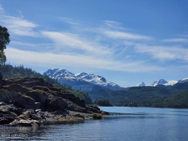 L1 Bear Cove Moorage Park, Homer, AK 99603 (MLS #19-7120) :: Wolf Real Estate Professionals
